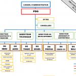 Organigramme fonctionnel du groupe CECO